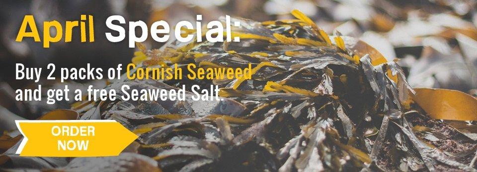 SEAWEED APRIL