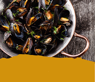 Fresh Cornish Seafood