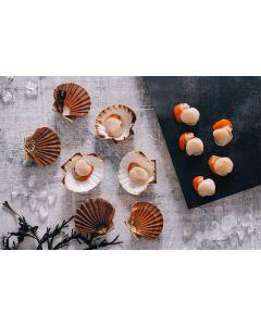 Half Shell Cornish Scallops