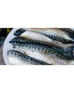 Cornish Mackerel Fillets 200g