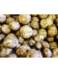 Cornish New Potatoes 500g